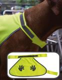 Korntex® Hunde-Weste mit bedruckten Hundepfoten optional Namensstickerei